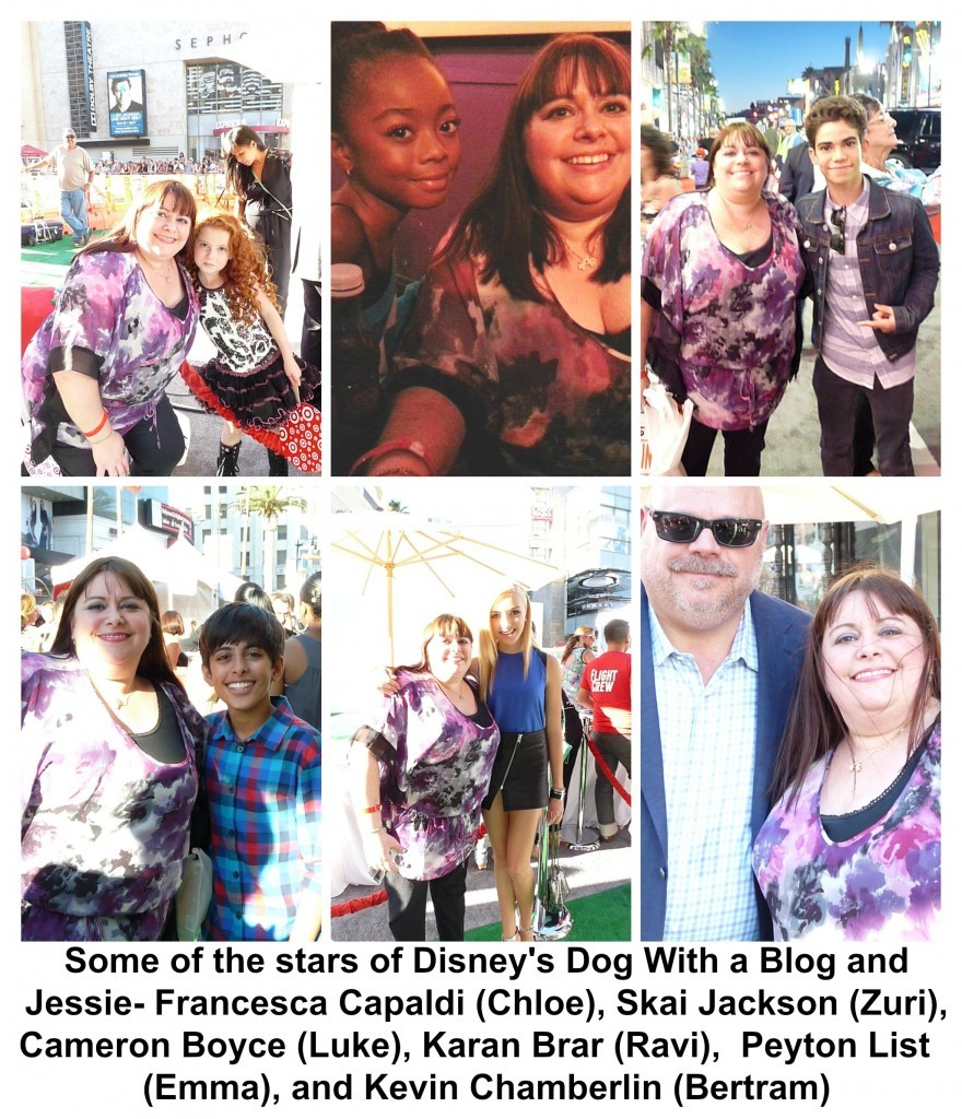 stars of Dog With a Blog and Jessie