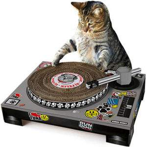 DJ Cat Scratching Post