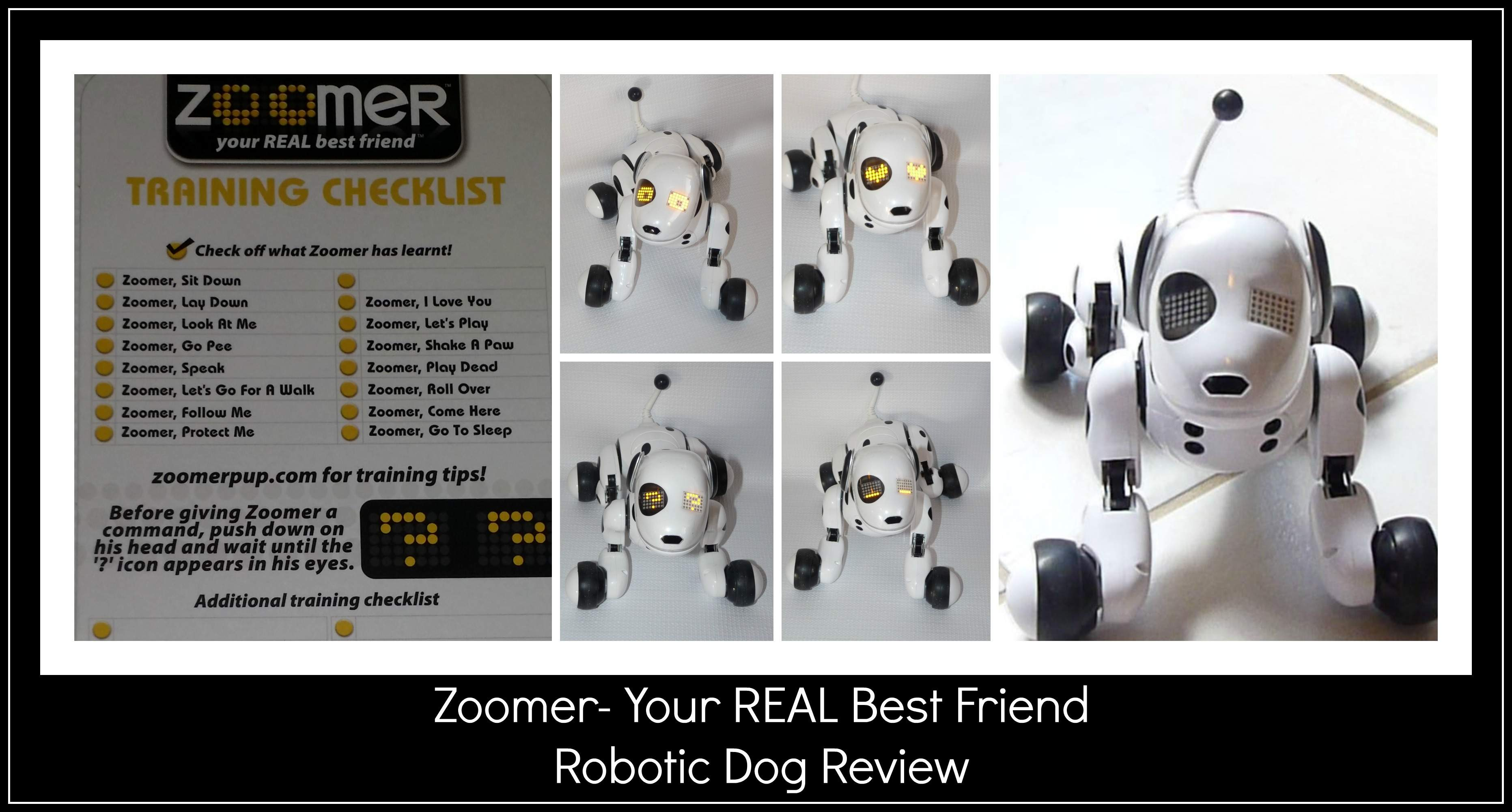 zoomer spinmaster robot dog
