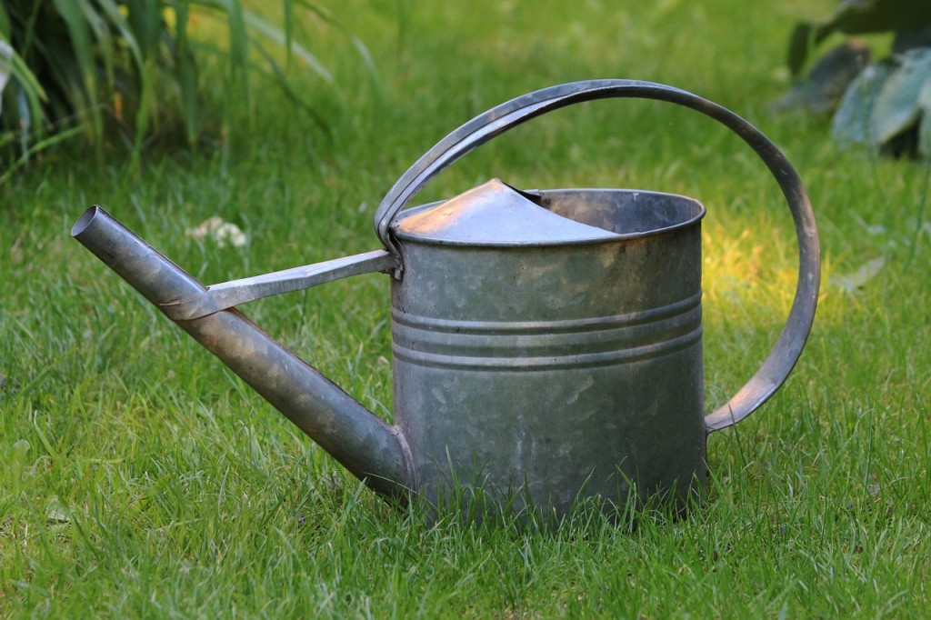 watering-can-828542_1280