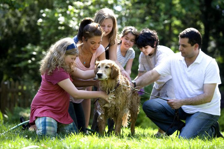 mother-father-and-four-children-with-their-dog-playing-outside-725x483