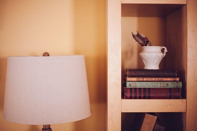 book-shelf-349938_640