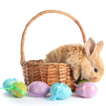 Sending Easter Baskets Everywhere in North America Just Got Easier