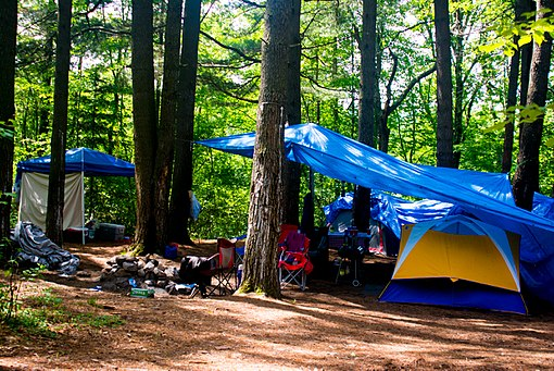 Camping_tents_in_the_woods_2