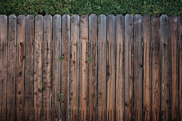 pexels-photo-113726