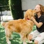 Taking Care of a Senior Dog